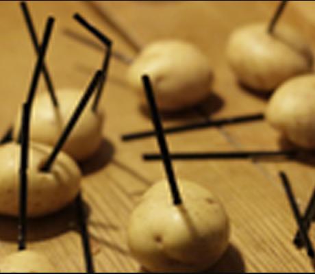 Fun with potatoes